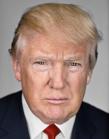 Donald Trump Haircut